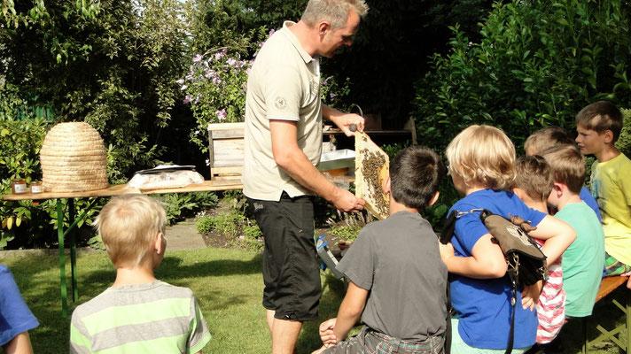 Ziele, Jugendförderung Bienen Veranstaltungen Schulen und Schaukästen