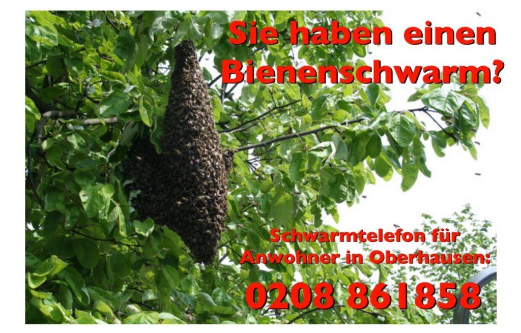 Schwarmtelefon für Anwohner in Oberhausen: +49(0) 208 861858