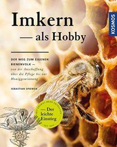 imkern als hobby Bienenvolk